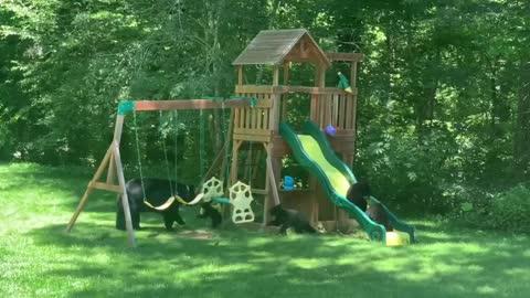 Familia de osos divirtiéndose en el patio de recreo