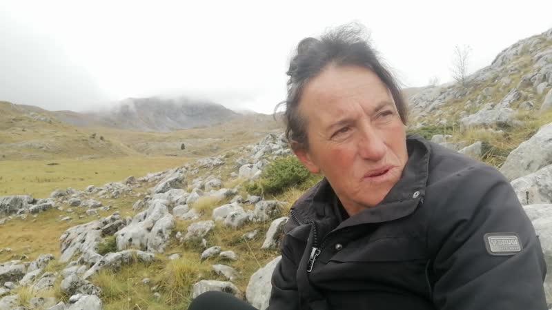 Gara Jovanović